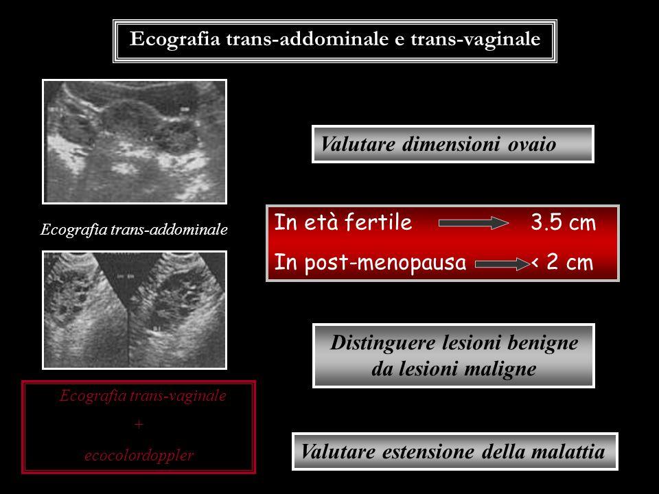 Ecografia trans-addominale e trans-vaginale