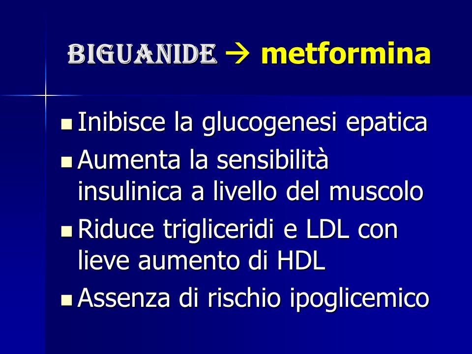 biguanide  metformina