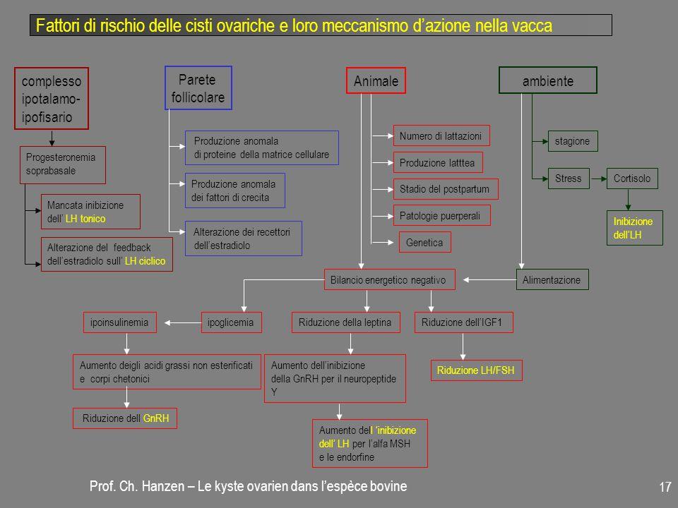 Fattori di rischio delle cisti ovariche e loro meccanismo d'azione nella vacca