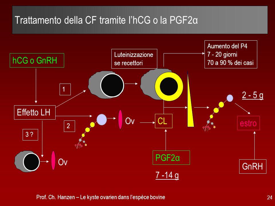 Trattamento della CF tramite l'hCG o la PGF2α