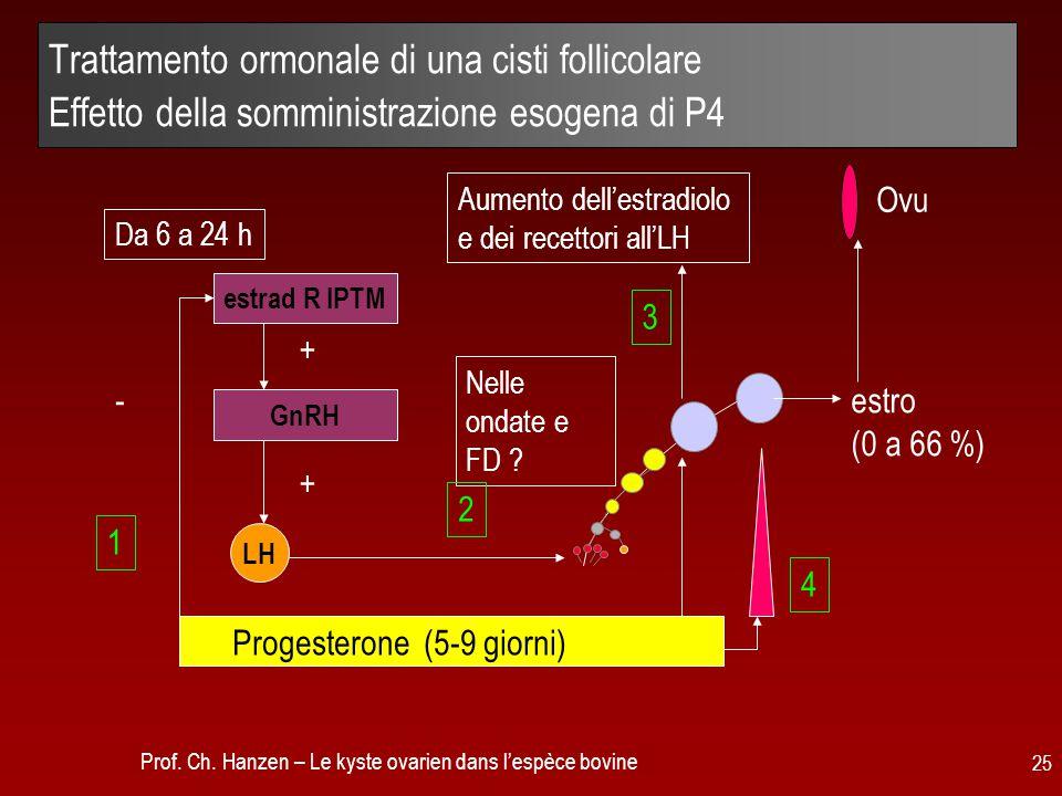 Trattamento ormonale di una cisti follicolare Effetto della somministrazione esogena di P4