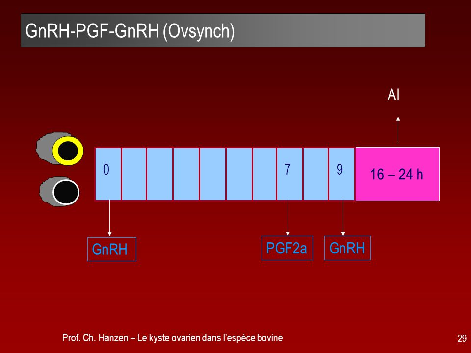 GnRH-PGF-GnRH (Ovsynch)