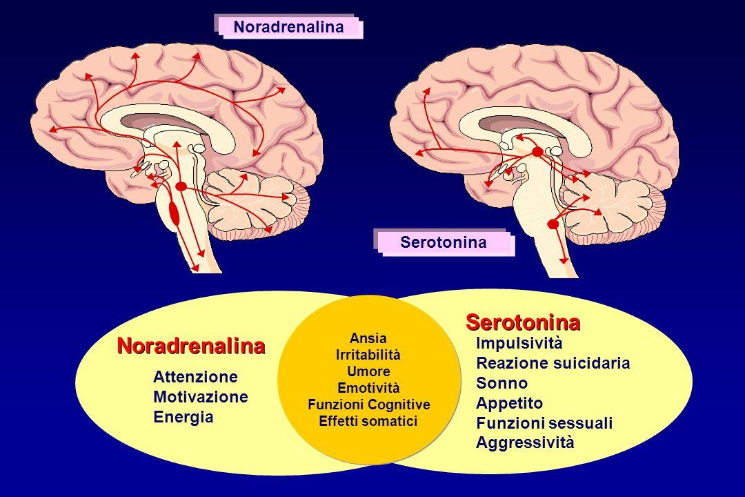 Serotonina Noradrenalina Noradrenalina Serotonina Impulsività