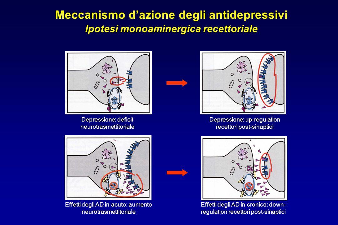 Meccanismo d'azione degli antidepressivi