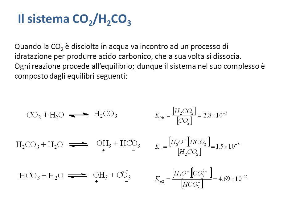 Il sistema CO2/H2CO3
