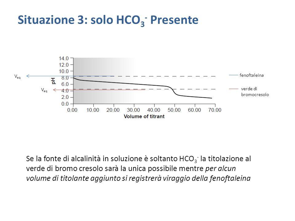 Situazione 3: solo HCO3- Presente