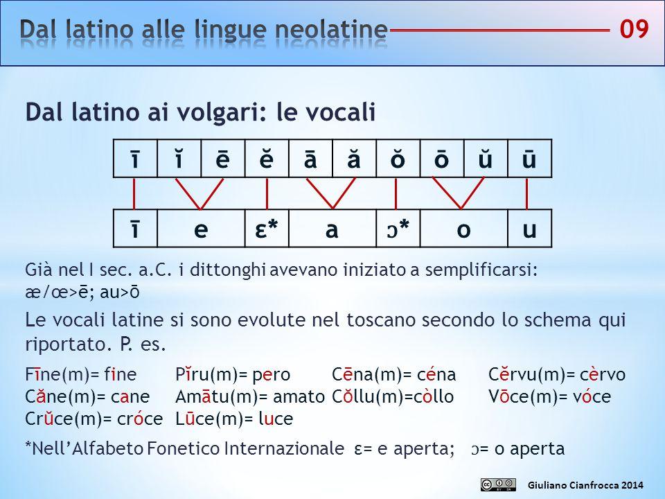 Dal latino alle lingue neolatine 09