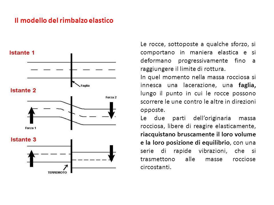 Il modello del rimbalzo elastico