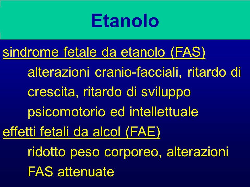 Etanolo sindrome fetale da etanolo (FAS)