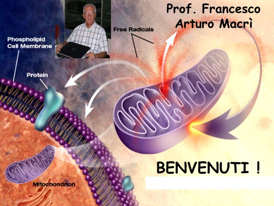 Prof. Francesco Arturo Macrì
