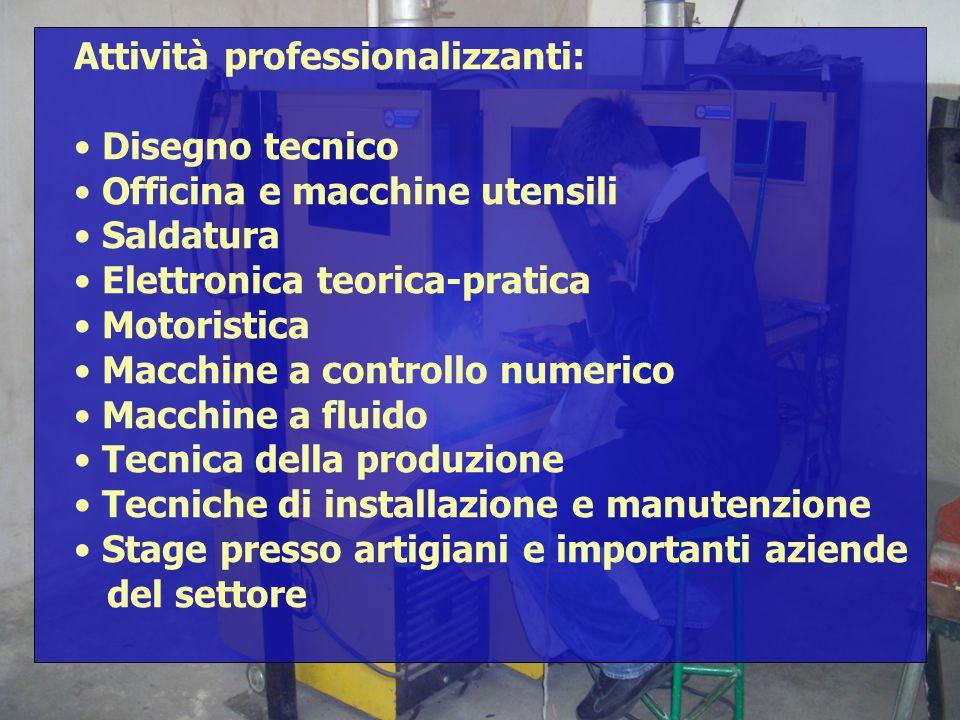 Attività professionalizzanti: Disegno tecnico