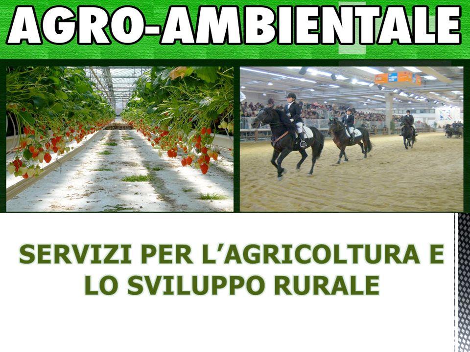 SERVIZI PER L'AGRICOLTURA E LO SVILUPPO RURALE