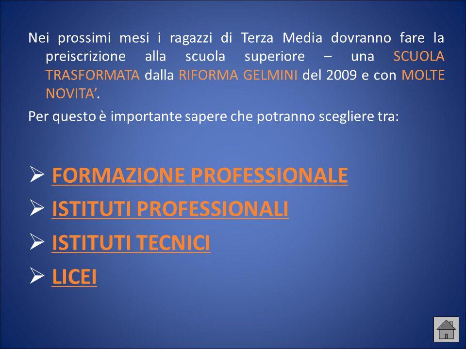 FORMAZIONE PROFESSIONALE ISTITUTI PROFESSIONALI ISTITUTI TECNICI LICEI