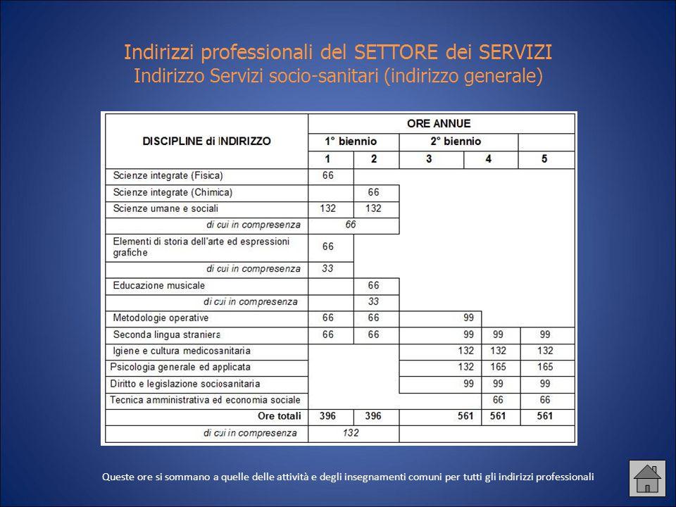 Indirizzi professionali del SETTORE dei SERVIZI Indirizzo Servizi socio-sanitari (indirizzo generale)