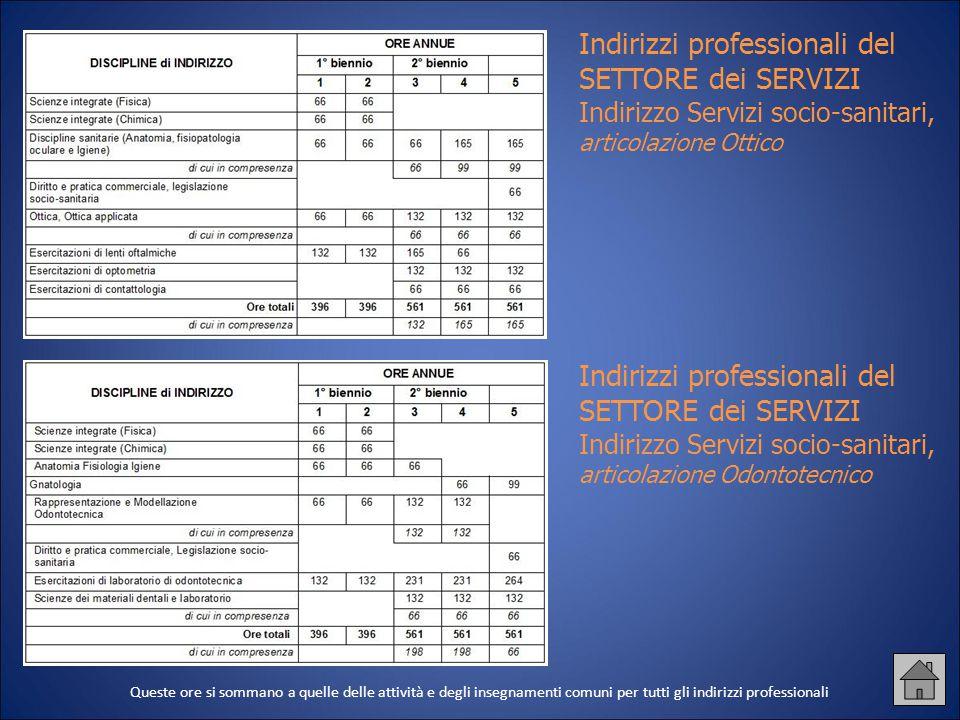 Indirizzi professionali del SETTORE dei SERVIZI Indirizzo Servizi socio-sanitari, articolazione Ottico