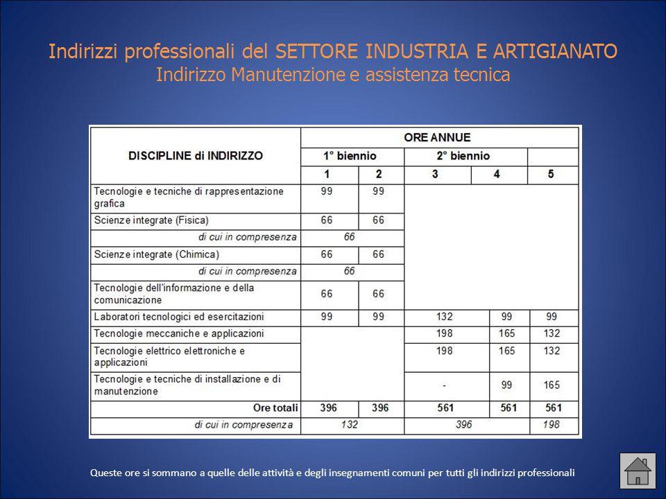 Indirizzi professionali del SETTORE INDUSTRIA E ARTIGIANATO Indirizzo Manutenzione e assistenza tecnica