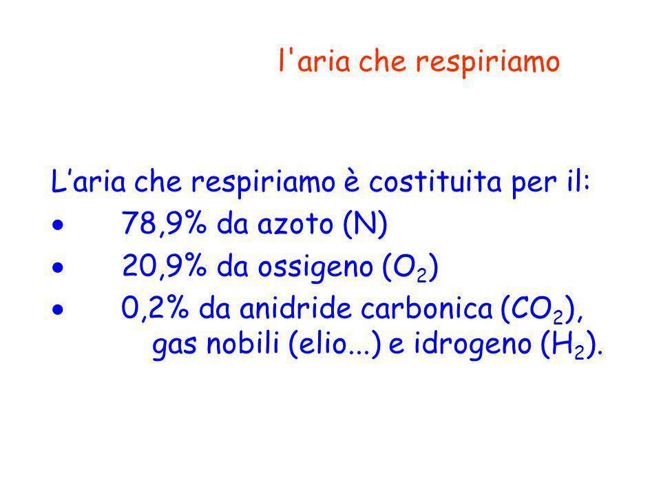 l aria che respiriamo L'aria che respiriamo è costituita per il: · 78,9% da azoto (N) · 20,9% da ossigeno (O2)