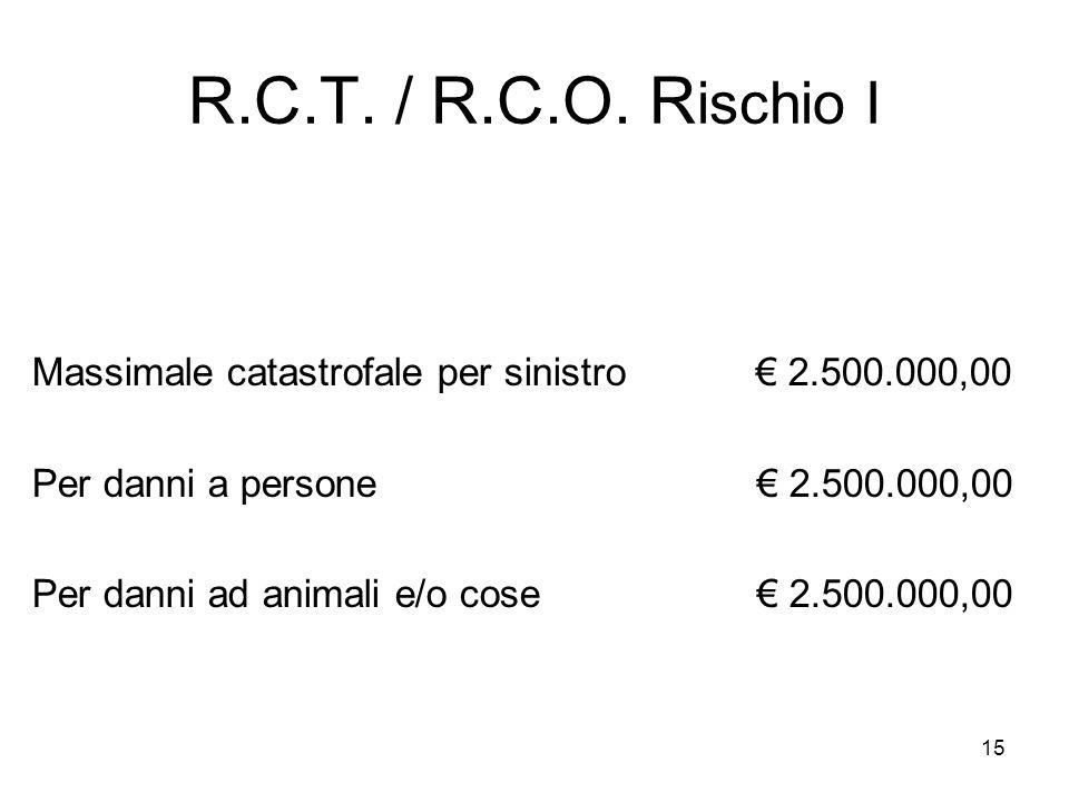 R.C.T. / R.C.O. Rischio I Massimale catastrofale per sinistro € 2.500.000,00.
