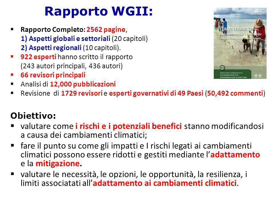 Rapporto WGII: Rapporto Completo: 2562 pagine, 1) Aspetti globali e settoriali (20 capitoli) 2) Aspetti regionali (10 capitoli).