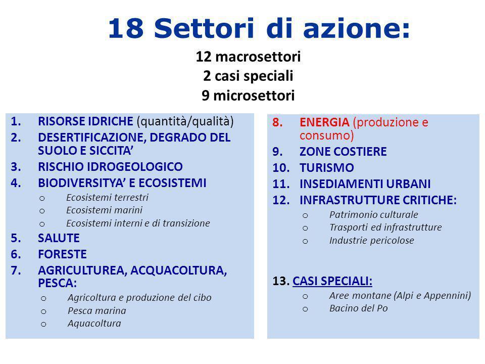 18 Settori di azione: 12 macrosettori 2 casi speciali 9 microsettori