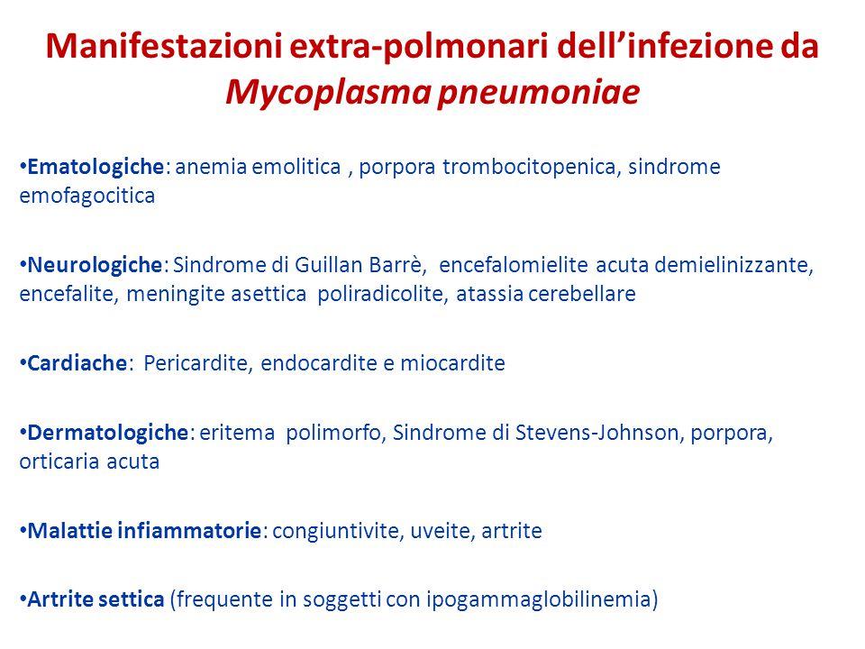 Manifestazioni extra-polmonari dell'infezione da Mycoplasma pneumoniae