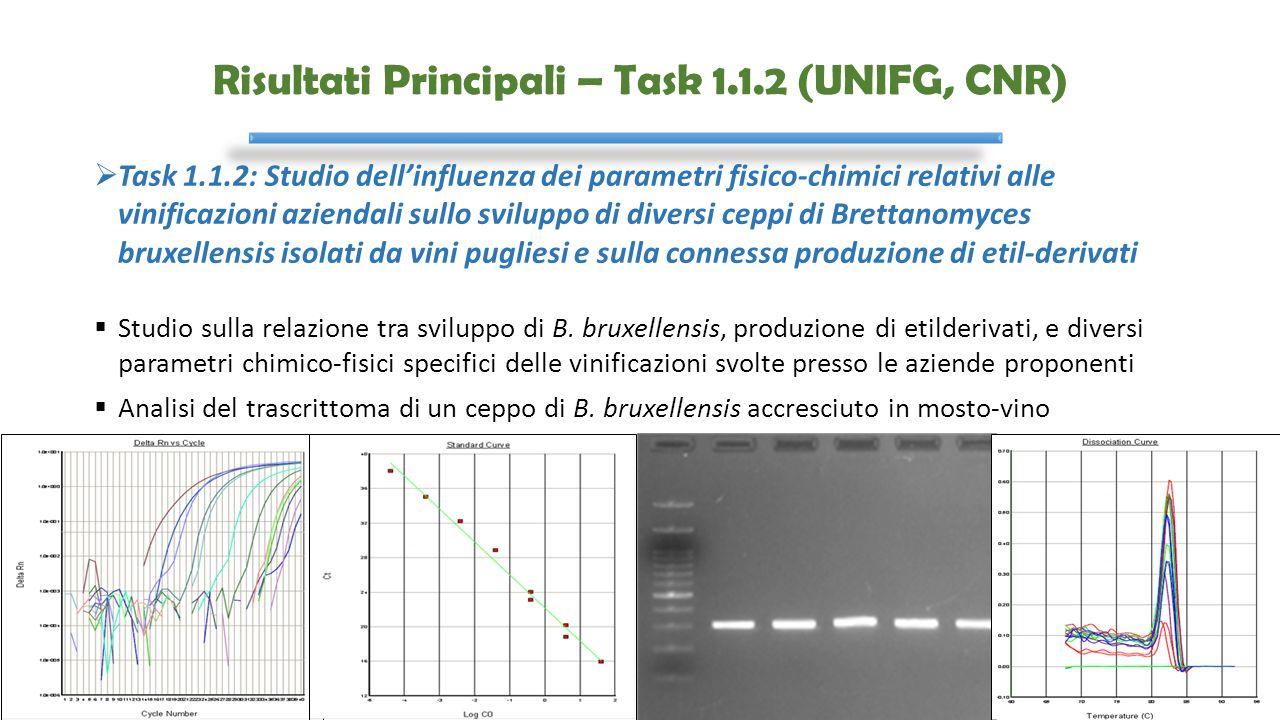 Risultati Principali – Task 1.1.2 (UNIFG, CNR)