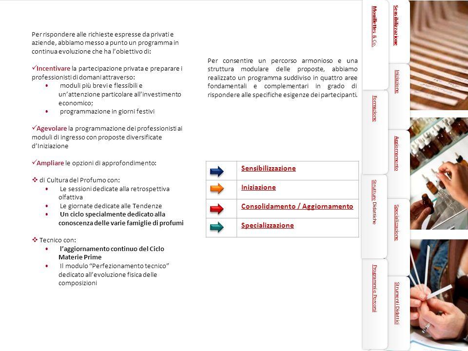 5 Sensibilizzazione Iniziazione Consolidamento / Aggiornamento