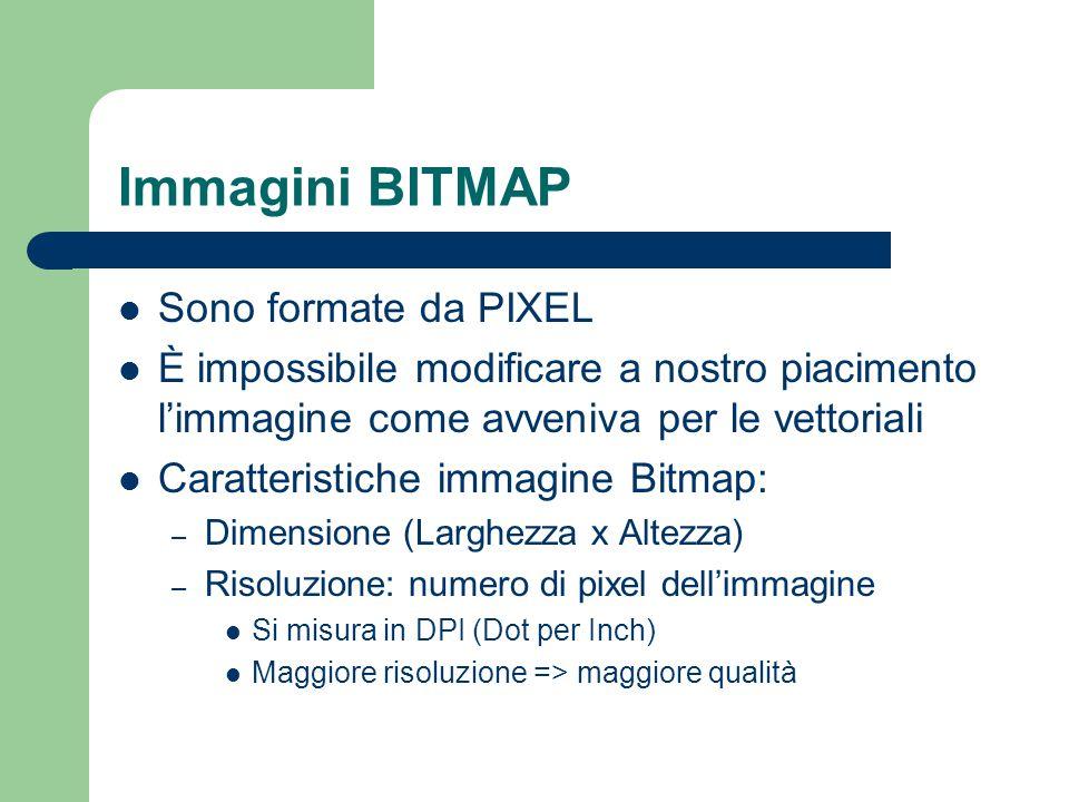Immagini BITMAP Sono formate da PIXEL