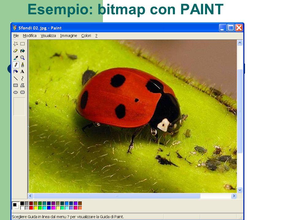 Esempio: bitmap con PAINT