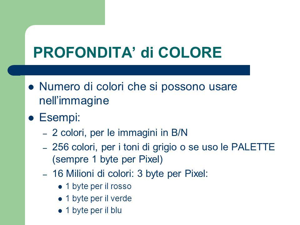 PROFONDITA' di COLORE Numero di colori che si possono usare nell'immagine. Esempi: 2 colori, per le immagini in B/N.