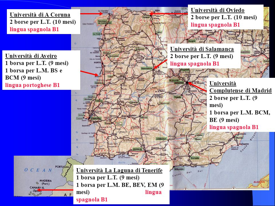 Università di Oviedo 2 borse per L.T. (10 mesi) lingua spagnola B1