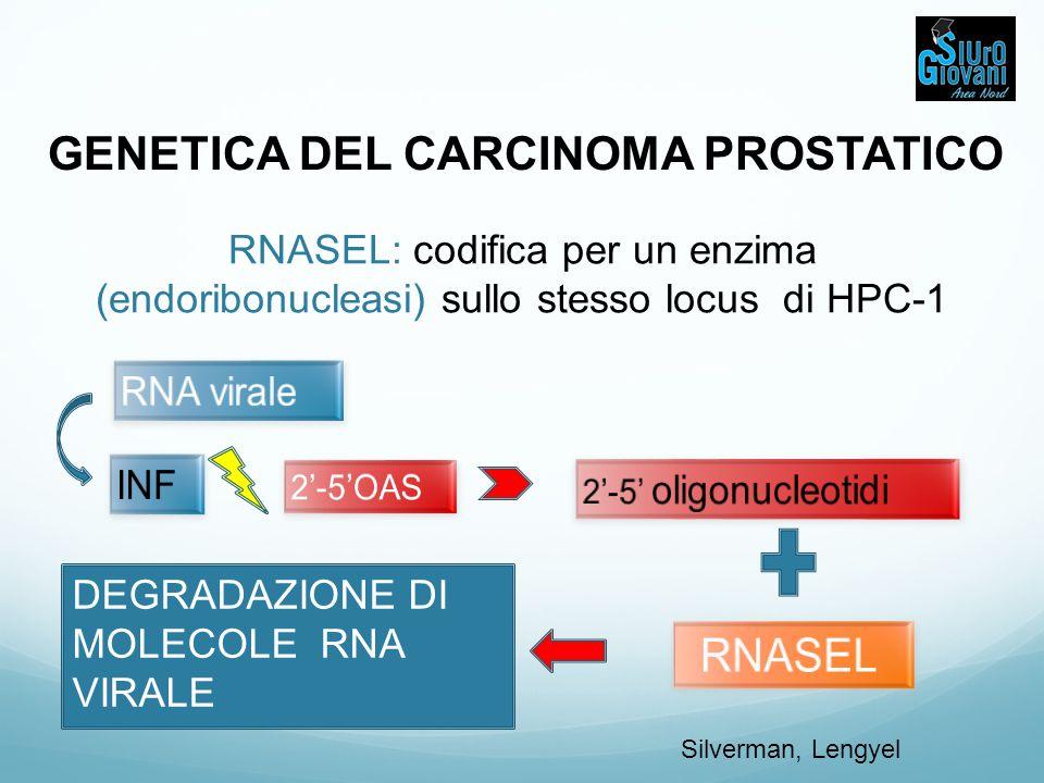 GENETICA DEL CARCINOMA PROSTATICO
