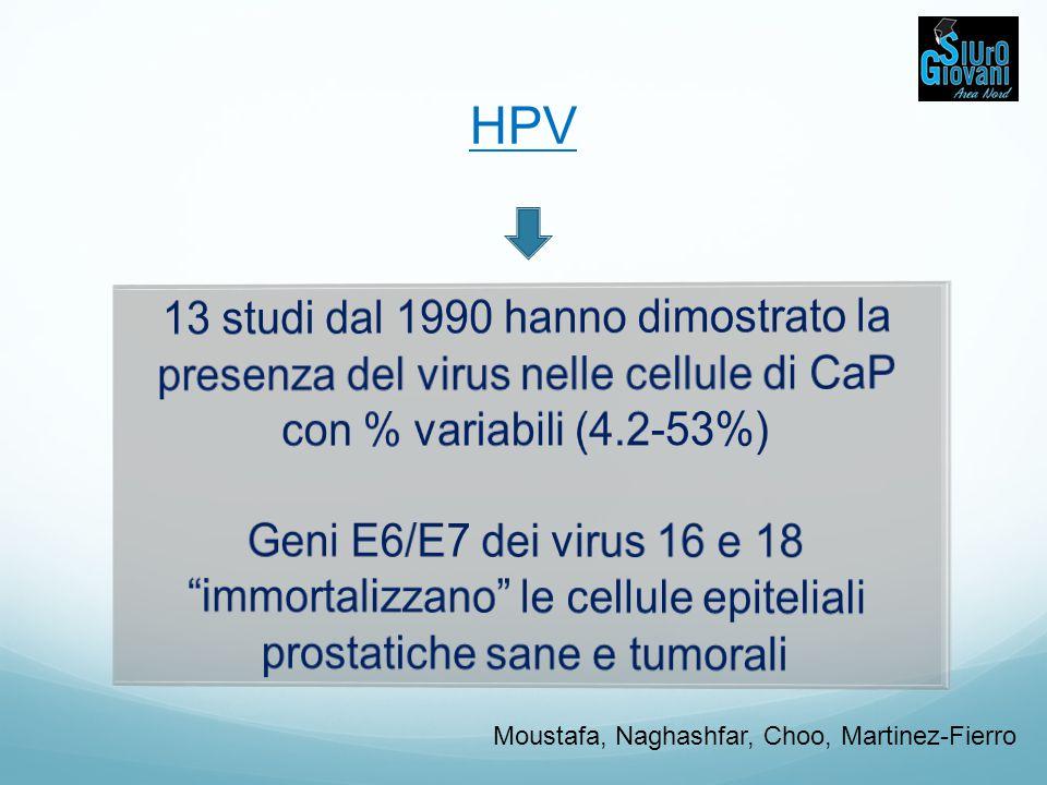 HPV 13 studi dal 1990 hanno dimostrato la presenza del virus nelle cellule di CaP con % variabili (4.2-53%)