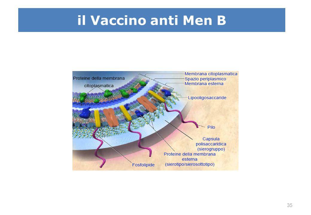 Reverse vaccinology