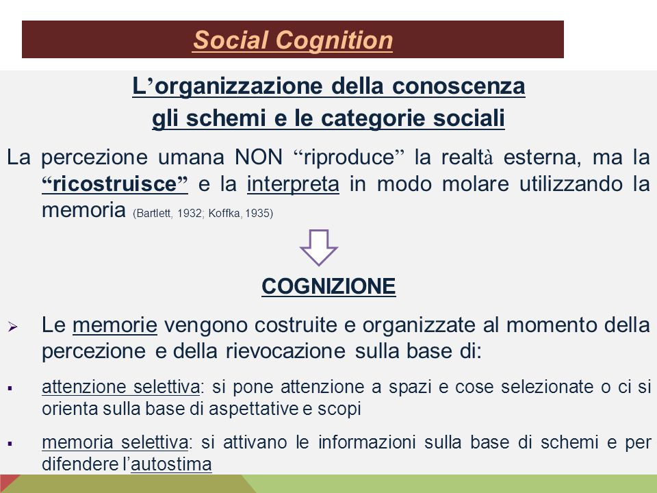 L'organizzazione della conoscenza gli schemi e le categorie sociali