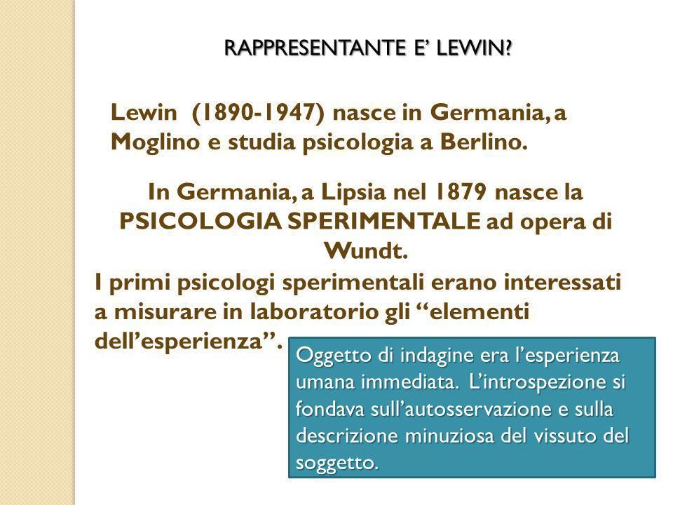 RAPPRESENTANTE E' LEWIN