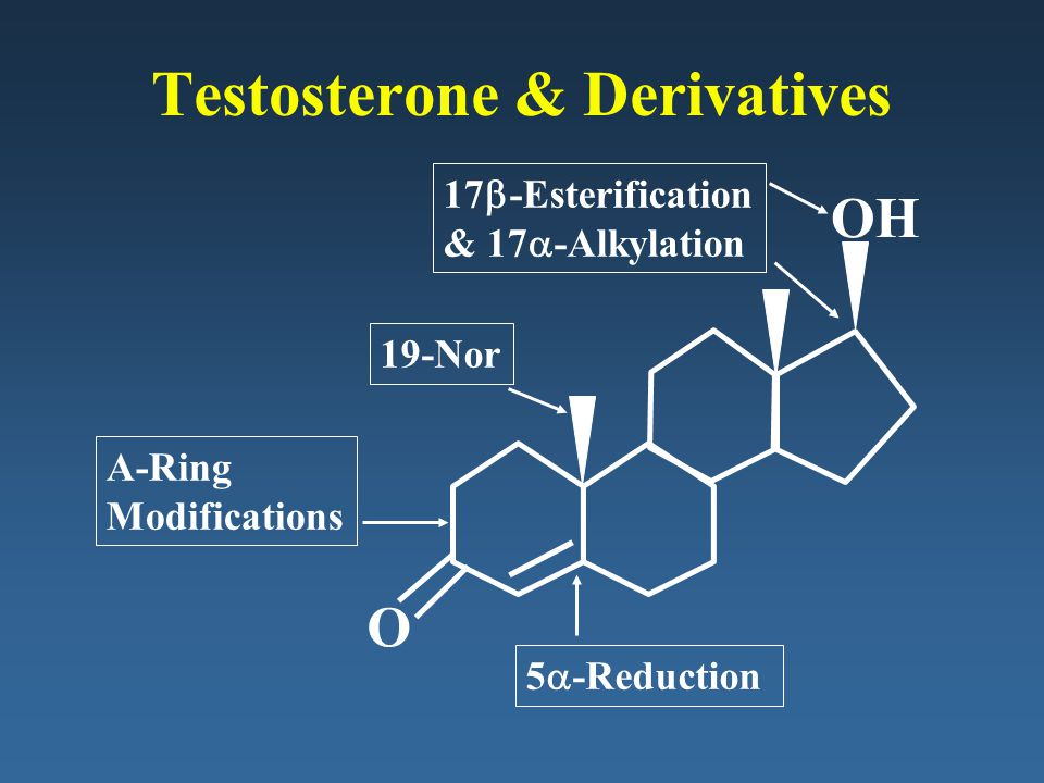 Testosterone & Derivatives