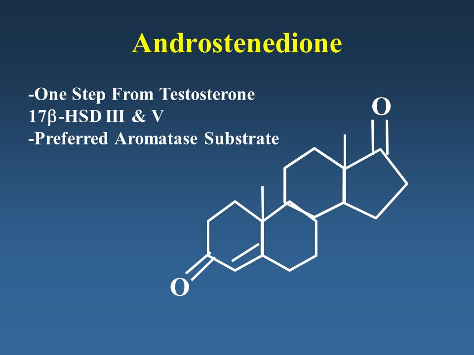 Androstenedione O O -One Step From Testosterone 17b-HSD III & V
