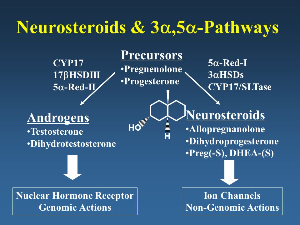 Neurosteroids & 3a,5a-Pathways