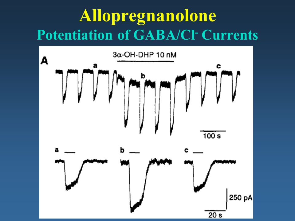 Allopregnanolone Potentiation of GABA/Cl- Currents