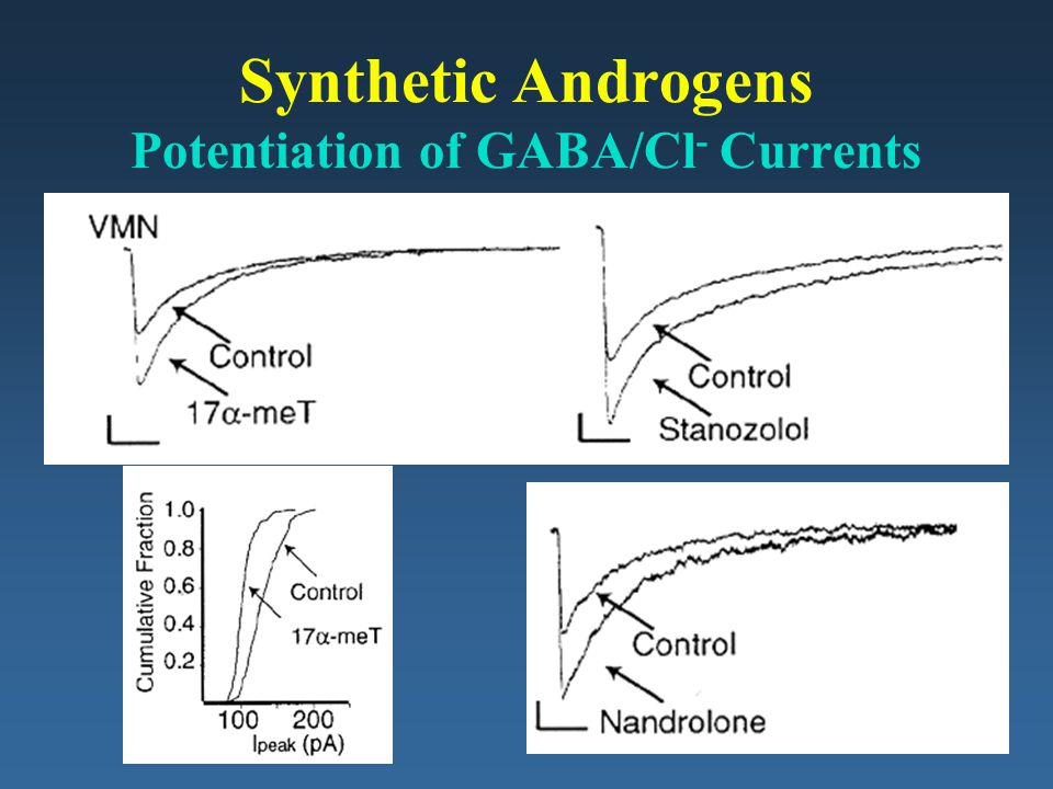 Synthetic Androgens Potentiation of GABA/Cl- Currents
