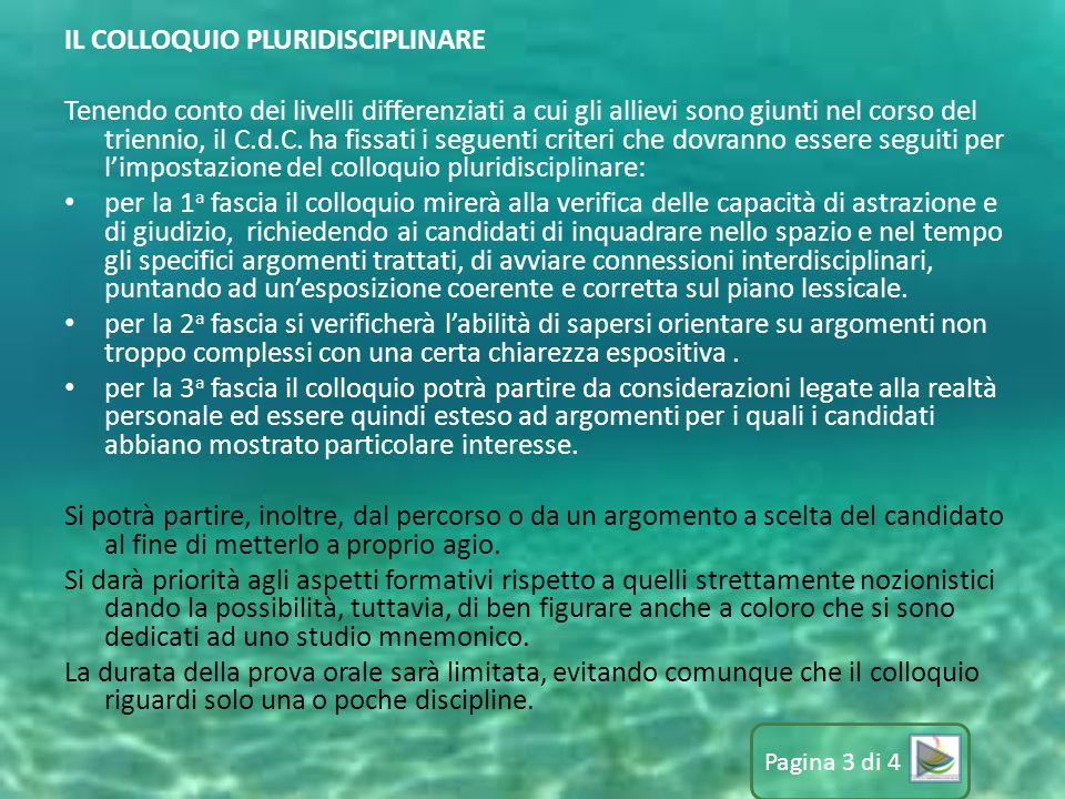 IL COLLOQUIO PLURIDISCIPLINARE