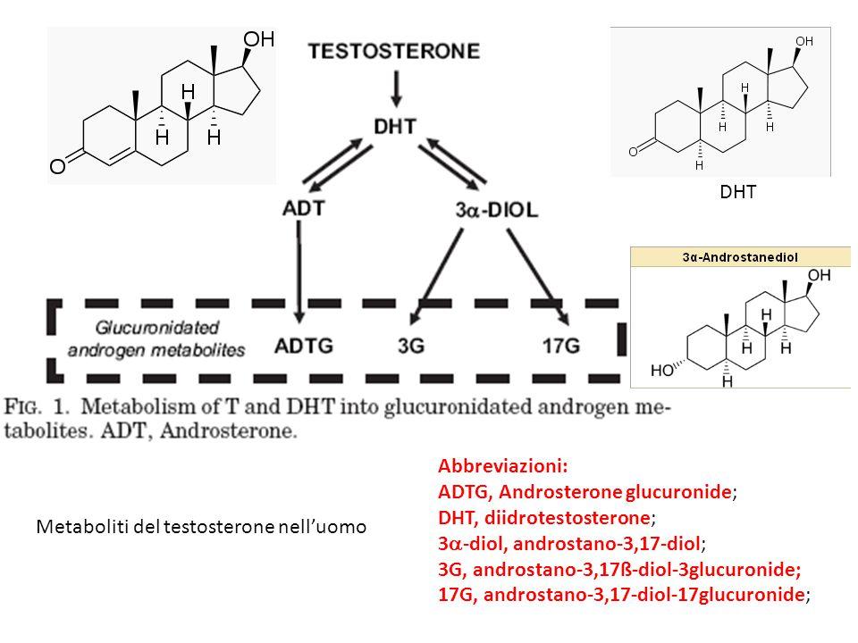 DHT Abbreviazioni: ADTG, Androsterone glucuronide; DHT, diidrotestosterone; 3a-diol, androstano-3,17-diol;