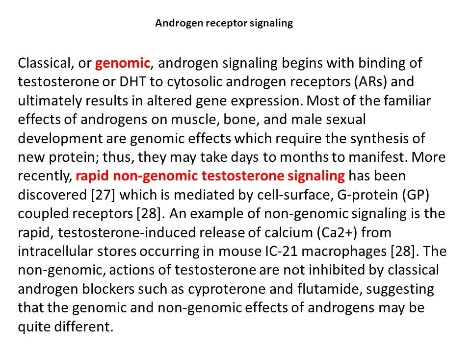 Androgen receptor signaling
