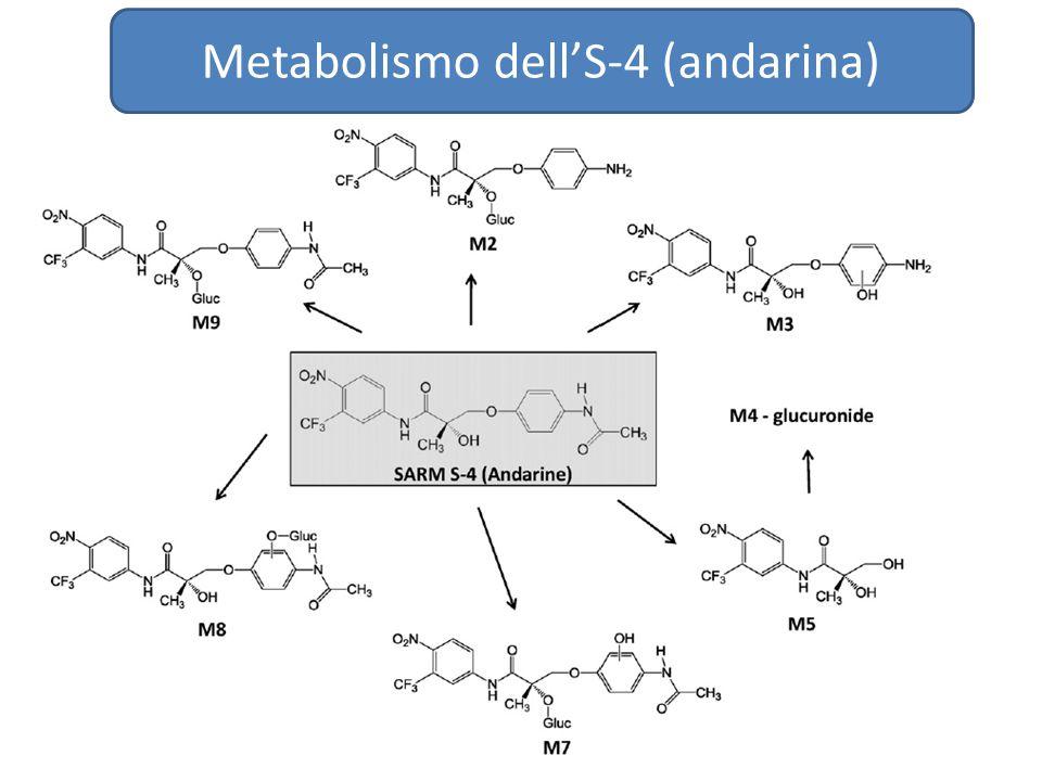 Metabolismo dell'S-4 (andarina)