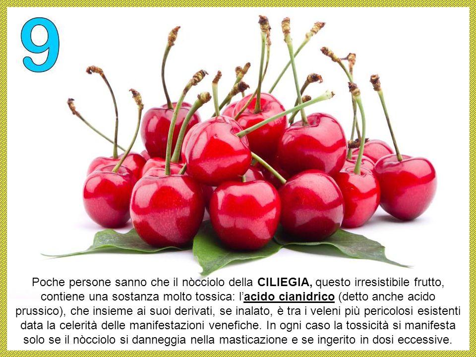 Poche persone sanno che il nòcciolo della CILIEGIA, questo irresistibile frutto, contiene una sostanza molto tossica: l'acido cianidrico (detto anche acido prussico), che insieme ai suoi derivati, se inalato, è tra i veleni più pericolosi esistenti data la celerità delle manifestazioni venefiche.