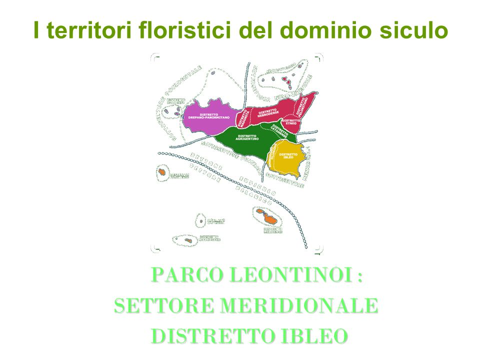 I territori floristici del dominio siculo