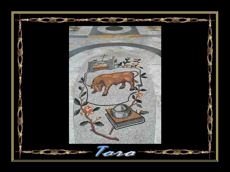 Toro Automatico