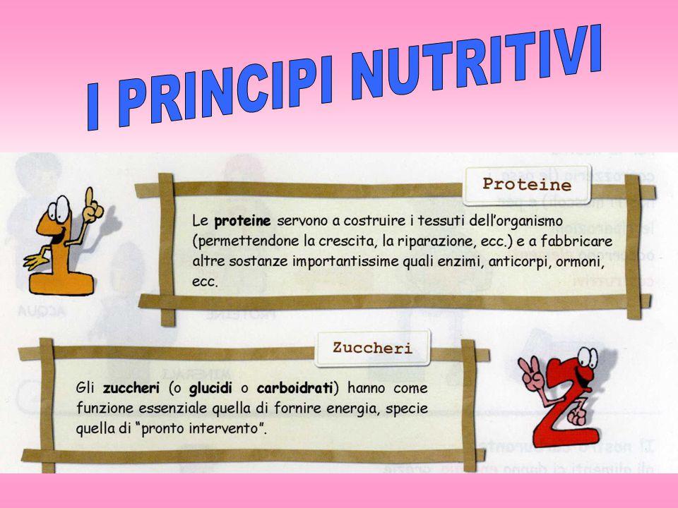 I PRINCIPI NUTRITIVI 5
