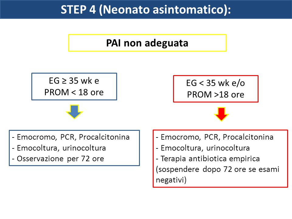 STEP 4 (Neonato asintomatico):